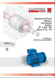 Explosion-Proof Motor Increased Safety